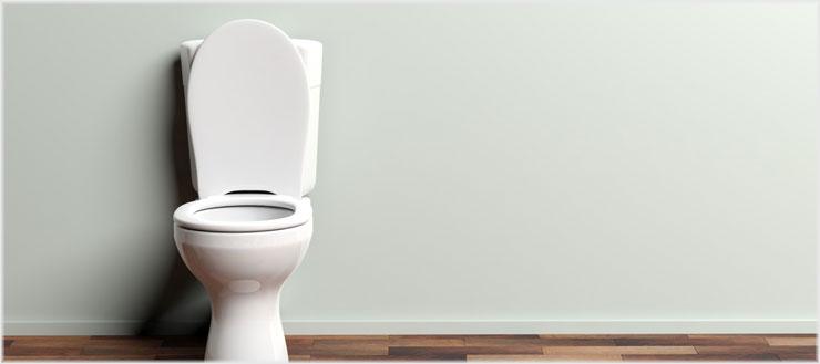Wenn Sie den Toilettendeckel vor dem Spülen schließen, vermeiden Sie, dass die Bakterien vom Inneren Ihrer Toilette nach außen gelangen.