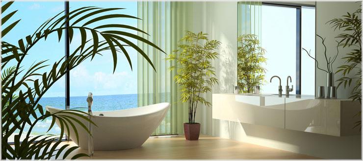Verwandeln Sie Ihr Bad mit Pflanzen in eine grüne Wellness-Oase.