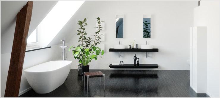 Achten Sie bei der Auswahl Ihrer Badezimmerpflanzen auf die gegebenen Lichtverhältnisse.
